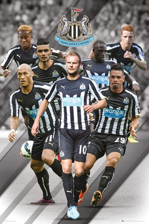 Star Players - Newcastle United Football Club 2014/15