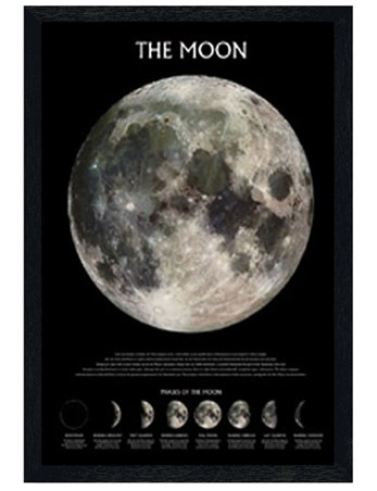 Black Wooden Framed Phases of the Moon - The Moon
