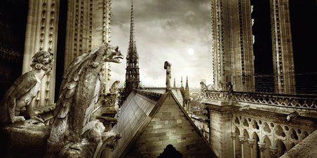 Gargouilles de Notre Dame - Stephane Rey Gorrez