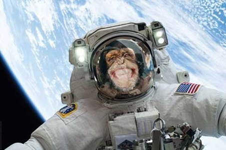 Framed Out Of This World - Cheeky Chimp