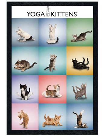 Black Wooden Framed Yoga Kittens Collage - Stretch