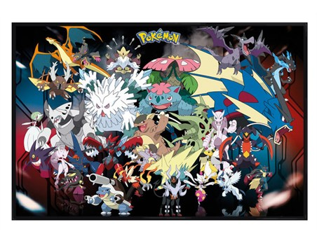 Framed Gloss Black Framed Pokemon Mega Evolutions -