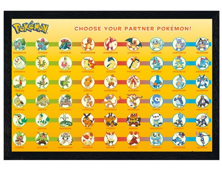Black Wooden Framed Choose Your Partner - Pokemon