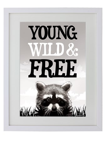 Framed Young Wild & Free - A Rebellious Raccoon