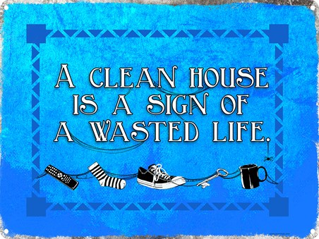 A Clean House Is A Sign Of A Wasted Life - Family Life
