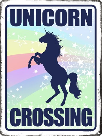 Unicorn Crossing - Believe In Magic