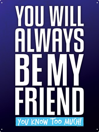 You Know Too Much! - You Will Always Be My Friend