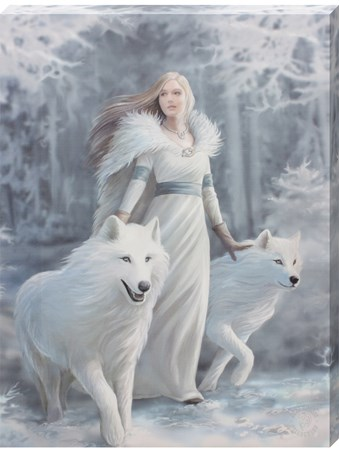 A loyal Friendship - Anne Stokes Winter Guardian Canvas Print