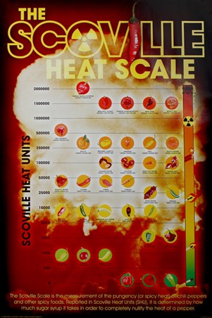 How Hot Can You Handle It? - The Scoville Heat Scale