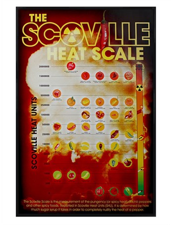 Gloss Black Framed How Hot Can You Handle It? - The Scoville Heat Scale