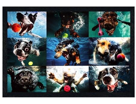 Black Wooden Framed A Man's Best Friend - Underwater Dogs