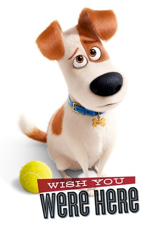 Framed Wish You Were Here - The Secret Life Of Pets