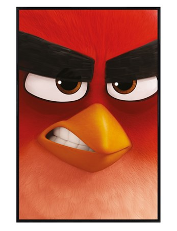 Gloss Black Framed Red - Angry Birds
