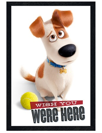 Black Wooden Framed Wish You Were Here - The Secret Life Of Pets