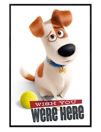 Gloss Black Framed Wish You Were Here - The Secret Life Of Pets