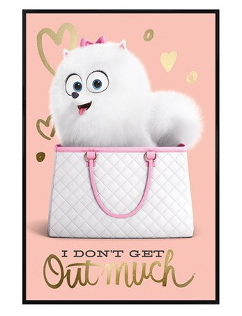 Gloss Black Framed I Don't Get Out Much - The Secret Life Of Pets