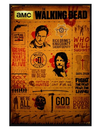 Gloss Black Framed Infographic - The Walking Dead