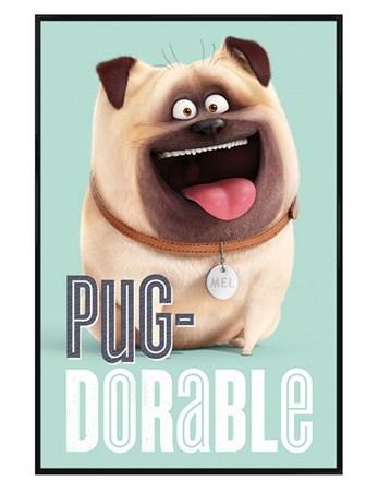 Gloss Black Framed Pug-dorable - The Secret Life Of Pets