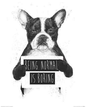 Being Normal Is Boring - Balazs Solti