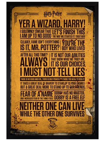 Black Wooden Framed Wizarding Words - Harry Potter