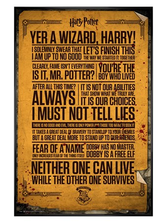 Gloss Black Framed Quotes - Harry Potter
