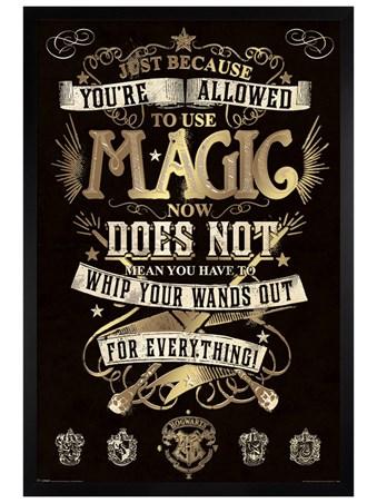 Framed Black Wooden Framed You're Allowed To Use Magic - Harry Potter