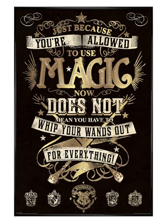 Gloss Black Framed Your Allowed To Use Magic - Harry Potter