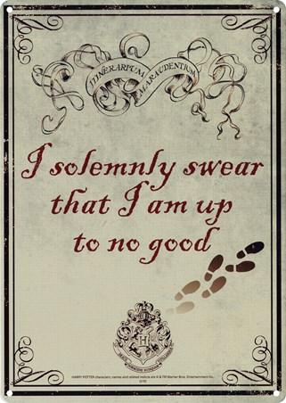 I Solemnly Swear - Harry Potter