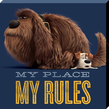 Duke And Max - The Secret Life Of Pets My Place My Rules