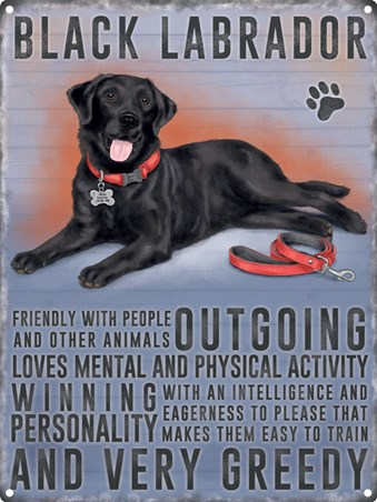 Man's Best Friend - Black Labrador