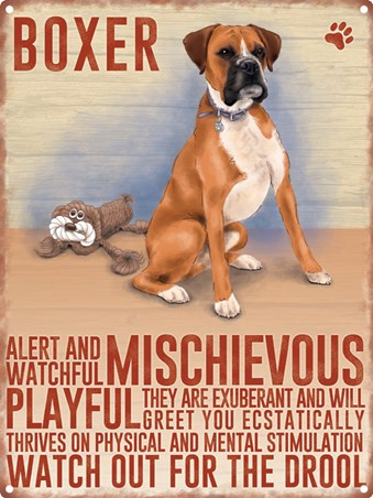 Watch Out For The Drool - Boxer Dog