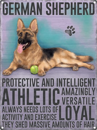 Protective And Intelligent, German Shepherd