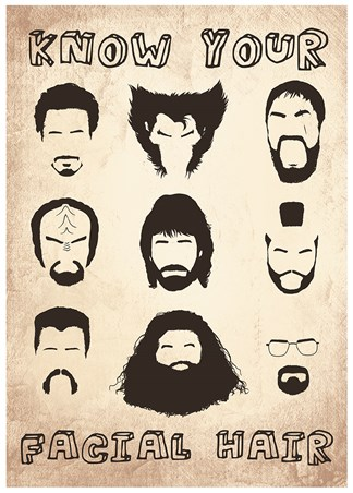 Framed Know Your Facial Hair - Iconic Beards