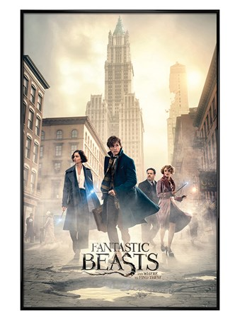 Gloss Black Framed New York Streets - Fantastic Beasts