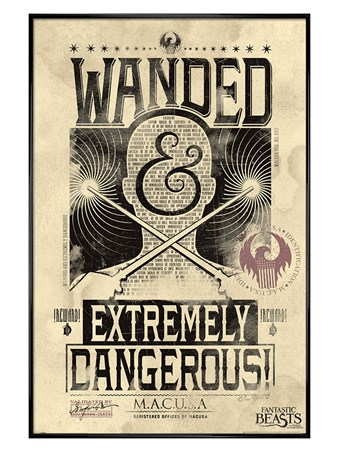 Framed Gloss Black Framed Extremely Dangerous - Fantastic Beasts