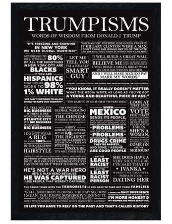 Black Wooden Framed Words Of Wisdom - Trumpisms