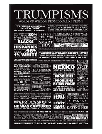 Gloss Black Framed Trumpisms - Words Of Wisdom