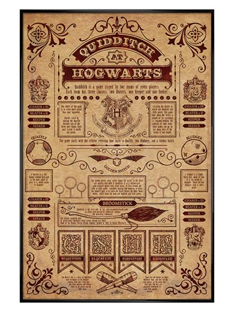 Gloss Black Framed Quidditch At Hogwarts - Harry Potter