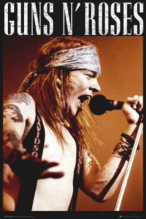Framed Guns N Roses - Axel Rose