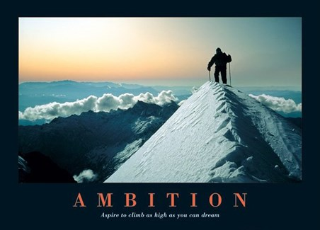 Framed Aspire To Climb As High As You Dream - Ambition