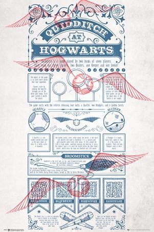 Framed Rough Game, Quidditch - Harry Potter