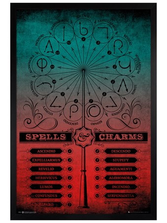 Black Wooden Framed Spells And Charms - Harry Potter
