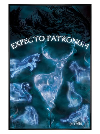 Gloss Black Framed Expecto Patronum - Harry Potter