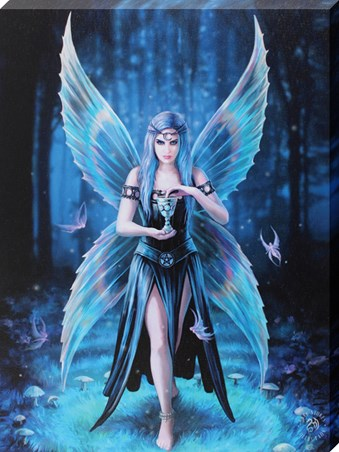 Framed Enchantment - Anne Stokes
