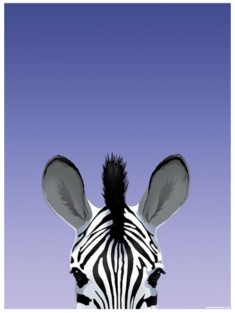 Zebra, Inquisitive Creatures