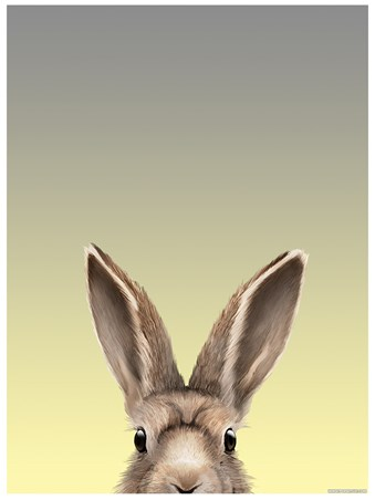 Alert As A Hare - Inquisitive Creatures