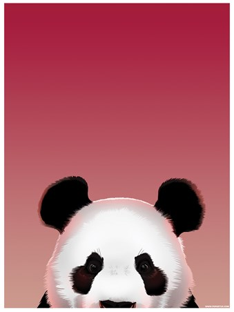 Pop Up Panda - Inquisitive Creatures