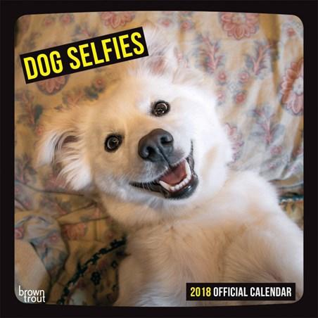 Say Sausages! - Dog Selfies