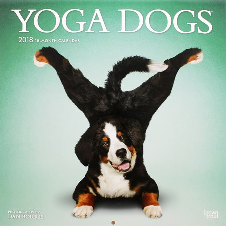 And Stretch! - Yoga Dogs