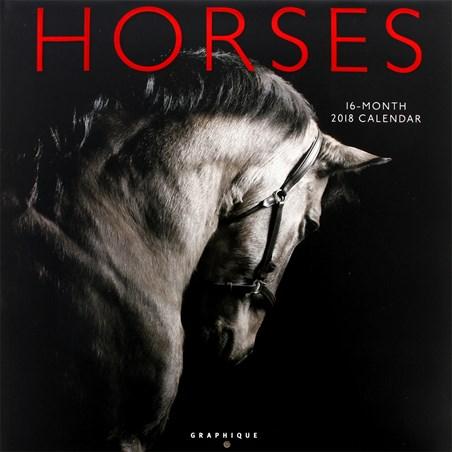 Majestic Stride - Horses